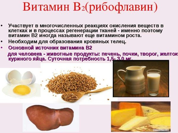 Влияние витамина В2 на организм