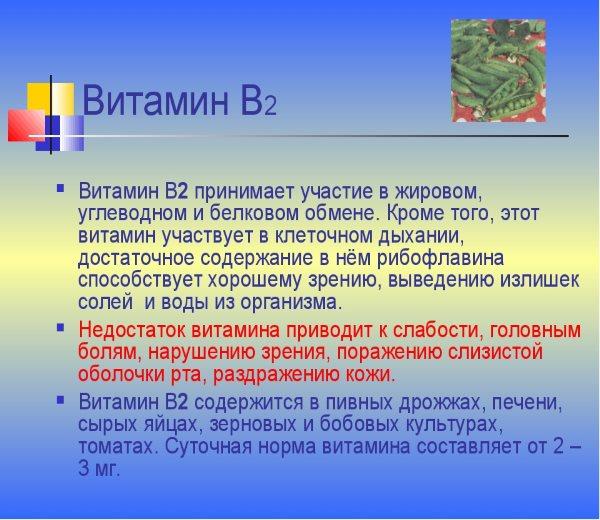 Дозировка и значение витамина В2