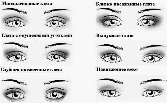 Виды формы глаз