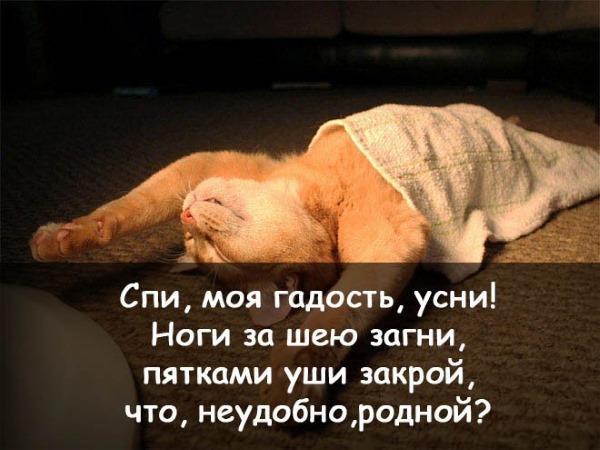 Как красиво пожелать любимому «Спокойной ночи». Романтические смс, в прозе, стихах, картинки