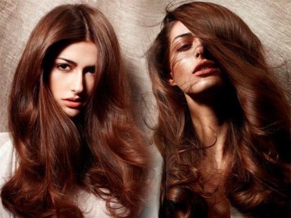 Медно каштановый махагон цвет волос