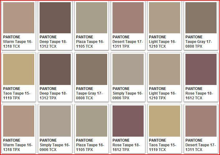Тауп цвет - это какой, фото в одежде, макияже. С чем носить, сочетание