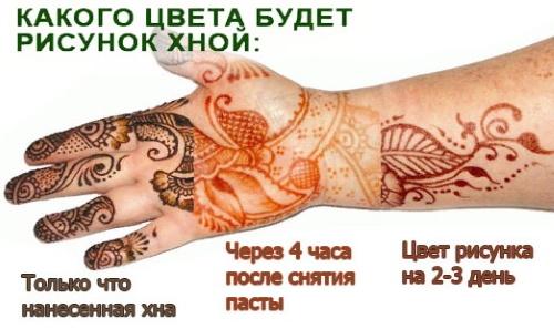 Мехенди на руке для начинающих. Фото эскизов, рисунки поэтапно