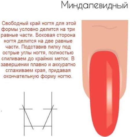 Миндалевидная форма коротких ногтей. Дизайн маникюра, фото, как сделать френч, идеи